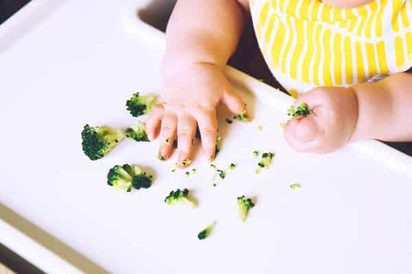 o que é blw baby led-weaning
