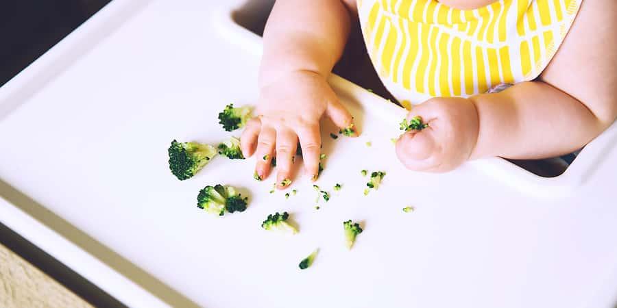 O que é BLW (Baby-Led Weaning)? Como funciona? É benéfico?