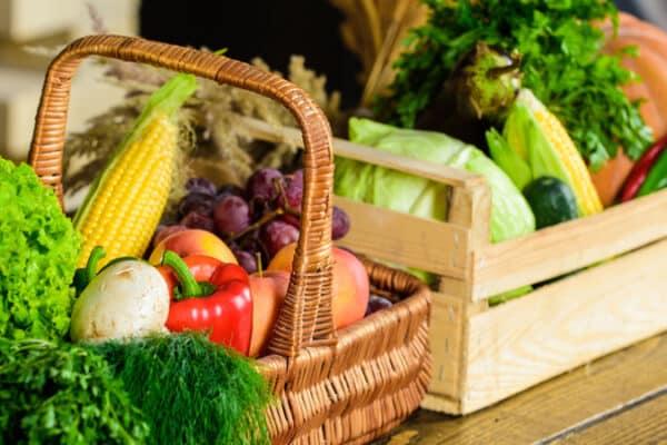 vantagens dos alimentos orgânicos
